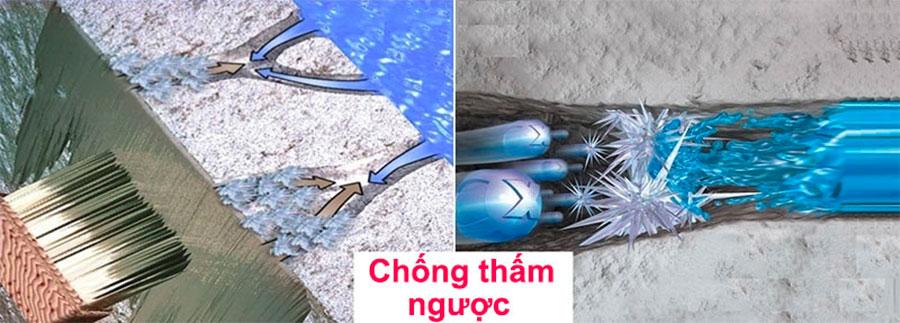 chong-tham-nguoc-la-gi