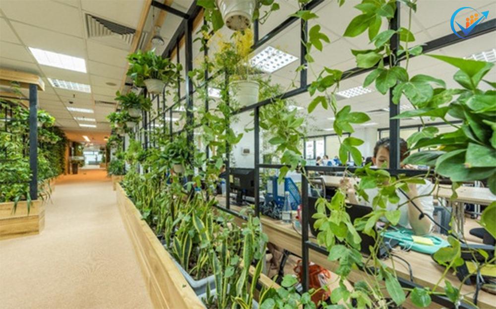 Thiết kế văn phòng theo xu hướng xanh