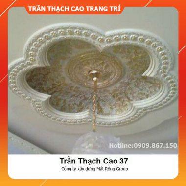 Trần Thạch Cao 37