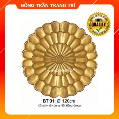 Bông Trần 01
