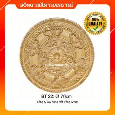 Bông Trần 22