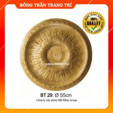 Bông Trần 29