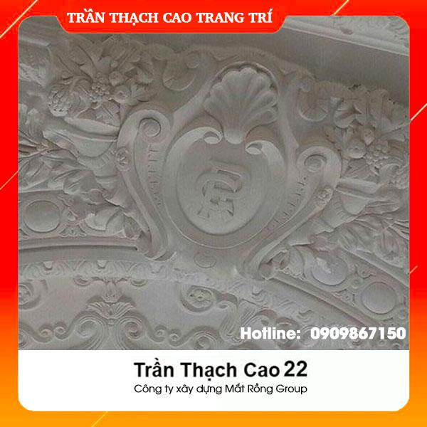 Trần Thạch Cao 22