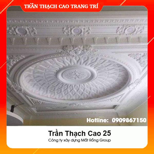 Trần Thạch Cao 25